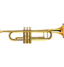 Trumpet Your Wins!